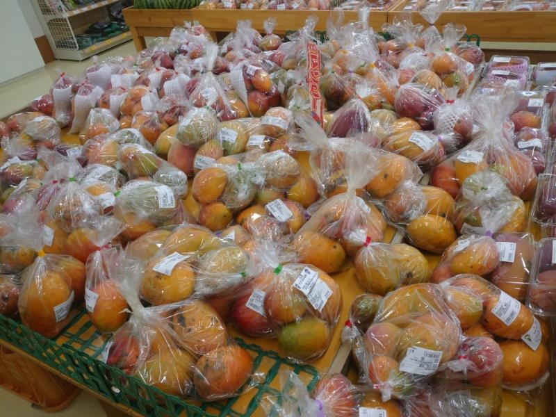 マンゴーの品種